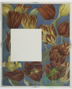 prang_cards_botanicals-00112 - 0686-Cards depicting flowers and names of flowers 107270