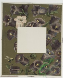 prang_cards_botanicals-00121 - 0689-Cards depicting flowers 107281