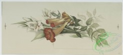 prang_cards_botanicals-00138 - 0716-Christmas cards depicting flowers, leaves, butterflies, paper, and seal with man's profile 107462
