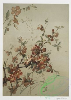 prang_cards_botanicals-00143 - 0757-Japan Quince 107568