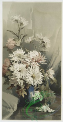 prang_cards_botanicals-00145 - 0766-Chrysanthemums 5 107601