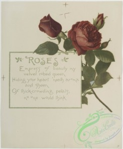 prang_cards_botanicals-00165 - 0857-Flower fancies-calendar with text, depicting roses and poppies 108047