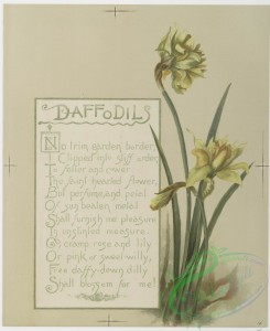 prang_cards_botanicals-00172 - 0860-Flower fancies-calendar with text, depicting lilies and daffodils 108063
