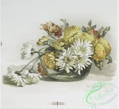 prang_cards_botanicals-00177 - 0910-Two prints entitled 'chrysanthemums in glass bowl' and 'waterlilies in blue jar.' 108235