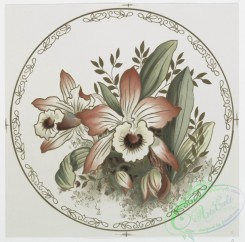 prang_cards_botanicals-00185 - 0919-China Painting (depicting flowers.) 108255