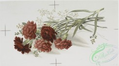 prang_cards_botanicals-00196 - 0928-Two Christmas cards entitled 'carnations 2' and 'jacqueminot roses 3.' 108278