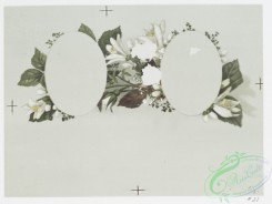 prang_cards_botanicals-00223 - 0985-Marriage certificates depicting flowers 108516