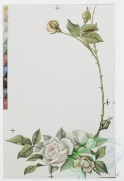 prang_cards_botanicals-00235 - 1049-Christmas cards depicting young girl with flowers in her hair, and plant and flower decorations 100200