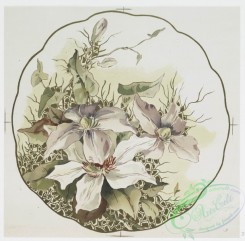 prang_cards_botanicals-00272 - 1161-China painting 3 (depicting white and red flowers.) 100576