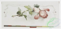 prang_cards_botanicals-00277 - 1163-Valentines and Christmas cards depicting flowers and portraits of women 100581