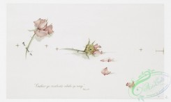 prang_cards_botanicals-00301 - 1212-Roses (Christmas cards with text by Herrick and Mary Conroy) 100841