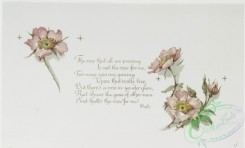 prang_cards_botanicals-00303 - 1213-Roses (Christmas cards with text by Bayly, Whittier and George MacDonald) 100843
