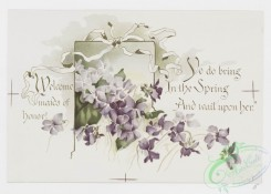 prang_cards_botanicals-00310 - 1219-To violets (cards with text and depictions of flowers) 100868
