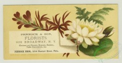 prang_cards_botanicals-00315 - 1284-Trade cards and calendars with New Year and Christmas greetings, depicting flowers, spools of thread, sewing, a pulley, women and children 101070