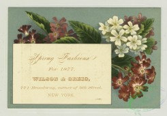 prang_cards_botanicals-00318 - 1293-Trade cards and labels depicting flowers 101102