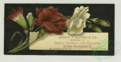 prang_cards_botanicals-00326 - 1334-Trade cards depicting flowers 101274