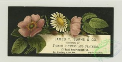 prang_cards_botanicals-00331 - 1358-Trade cards depicting flowers 101369