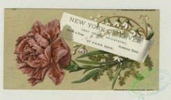 prang_cards_botanicals-00333 - 1391-Trade cards depicting flowers, a fairy and a baby 101562