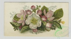 prang_cards_botanicals-00340 - 1482-Trade cards depicting flowers, girls, Easter eggs and a barn interior 102015