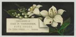 prang_cards_botanicals-00341 - 1490-Trade cards depicting flowers and a beauty salon 102053