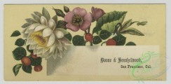 prang_cards_botanicals-00345 - 1502-Trade cards depicting flowers and a river landscape 102109