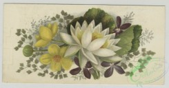 prang_cards_botanicals-00347 - 1509-Trade cards depicting flowers and a portrait of a child 102140