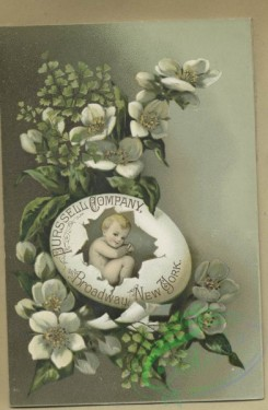 prang_cards_botanicals-00356 - 1613-Trade cards depicting boats, flowers, leaves, an insect, and a baby in a cracked eggs 102599