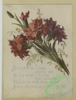 prang_cards_botanicals-00362 - 1616-Christmas and trade cards depicting flowers, trees, branches, cloth and a vase 102612