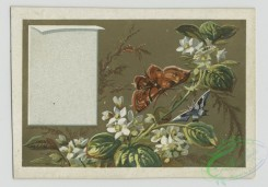 prang_cards_butterflies-00044 - 1574-Cards depicting butterflies, flowers and biblical scenes 102441