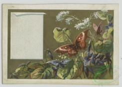 prang_cards_butterflies-00047 - 1577-Cards depicting flowers, butterflies and biblical scenes 102454