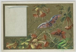 prang_cards_butterflies-00048 - 1582-Trade cards depicting flowers, butterflies and men with 'layettes' advertisements 102485