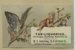 prang_cards_butterflies-00054 - 1657-Calendars and trade cards depicting cats, dogs, adults, children, angels, butterflies, flowers, kite, winter, spring, a barn yard and a fire 102872