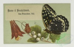 prang_cards_butterflies-00055 - 1757-Trade cards depicting flowers, butterflies, a woman with a tambourine, views of a lake and forest, cigarette cards entitled 'between the acts & bravo 103509