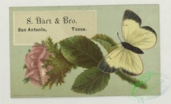 prang_cards_butterflies-00056 - 1757-Trade cards depicting flowers, butterflies, a woman with a tambourine, views of a lake and forest, cigarette cards entitled 'between the acts & bravo 103510