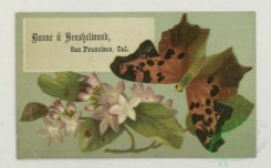 prang_cards_butterflies-00062 - 1770-Trade cards depicting flowers, butterflies and a portrait of a woman holding a flower 103583