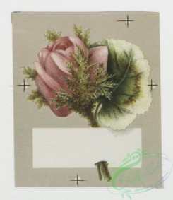 prang_cards_holidays-00027 - 0031-Greeting cards depicting flowers 105001