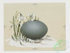 prang_cards_holidays-00076 - 0215-Easter cards depicting nests, eggs, butterflies, birds, flowers, and plants 104096