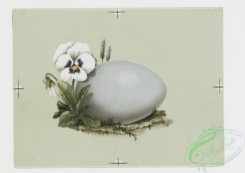 prang_cards_holidays-00077 - 0215-Easter cards depicting nests, eggs, butterflies, birds, flowers, and plants 104097