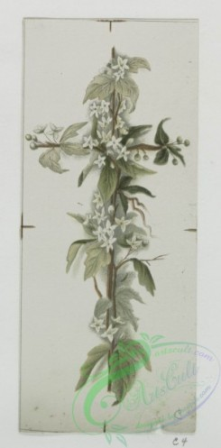 prang_cards_holidays-00131 - 0587-Christmas and Easter cards depicting flowers, foliage, decorative ornamentation, stars and crosses 106815