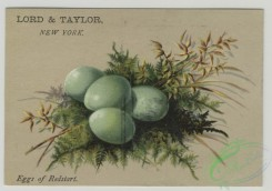 prang_cards_holidays-00176 - 1503-(A calendar and trade cards depicting eggs, landscapes and a house with a chimney.) 102113