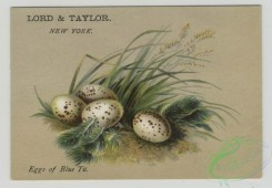 prang_cards_holidays-00178 - 1503-(A calendar and trade cards depicting eggs, landscapes and a house with a chimney.) 102115