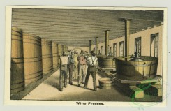 prang_cards_people-00044 - 1312-Trade cards for a winery entitled-Works and vaults, Wine presses, Finishing champagne 101182