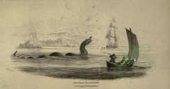 sea_animals-00187 - Great Sea Serpent, 2 [3646x1902]