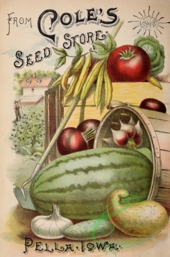 seeds_catalogs-00053 - 053-Watermelon, Tomato, Bean, Onion, Carrot, Harvest, vegetables [2862x4311]