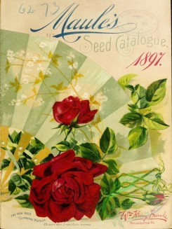 seeds_catalogs-00627 - 023-Rose [2801x3733]