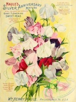 seeds_catalogs-00702 - 003-Sweet Pea [2744x3671]