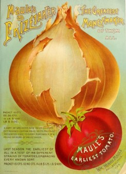 seeds_catalogs-00734 - 035-Onion, Tomato [2714x3744]