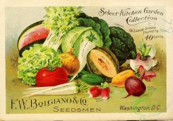 seeds_catalogs-01299 - 045-Vegetables, Celery, Watermelon, Beet, Cucumber, Tomato [3582x2495]