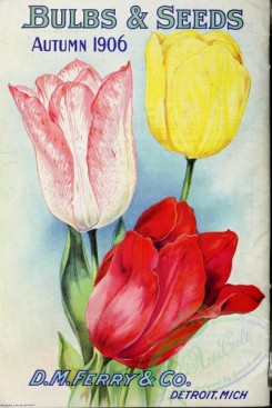 seeds_catalogs-01374 - 023-Tulips [2864x4281]