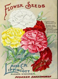 seeds_catalogs-01450 - 100-Carnations [2501x3416]